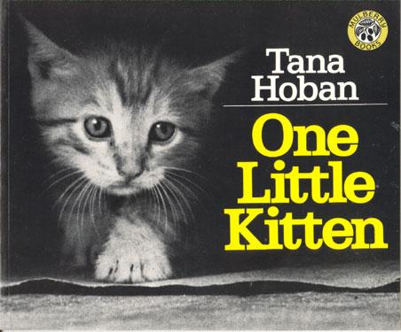 One_Little_Kitten