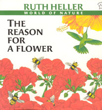 The Life of Ruth Heller with Reviews of her Books